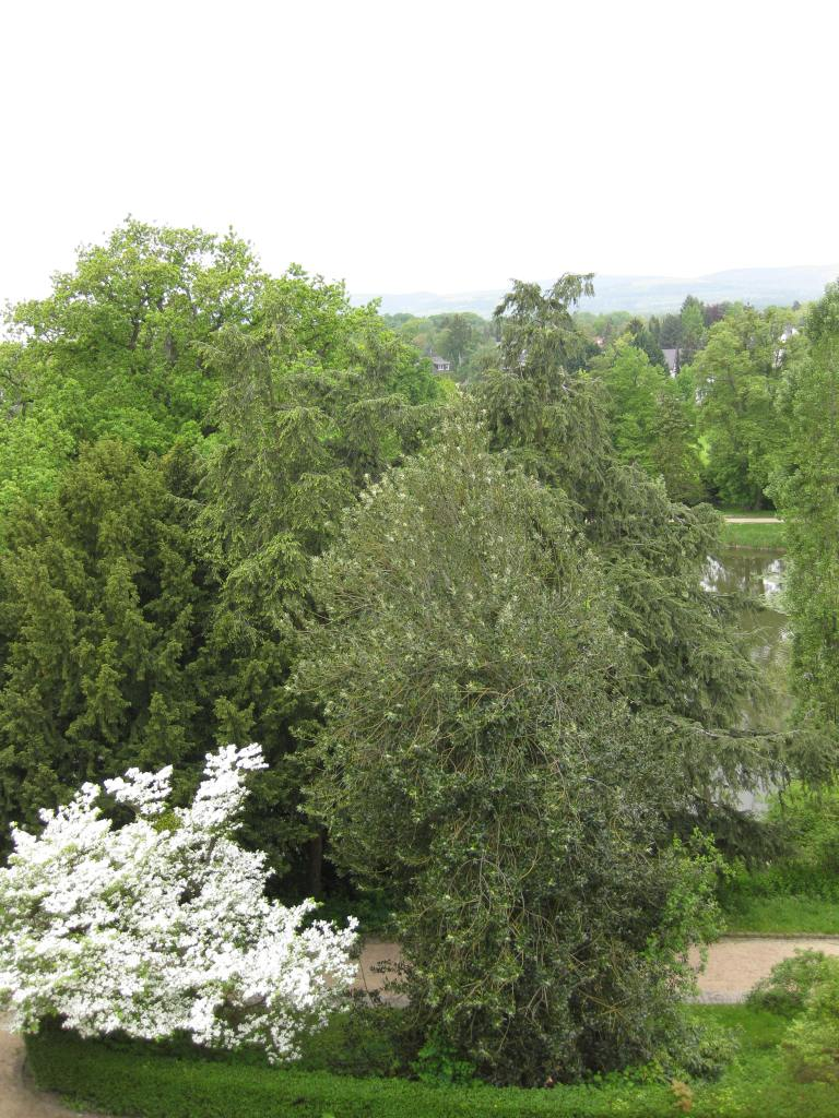 "Bad Homburg castle grounds (Taunus Mountains ""champagne air""."